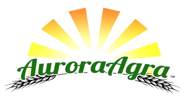 Aurora Agra